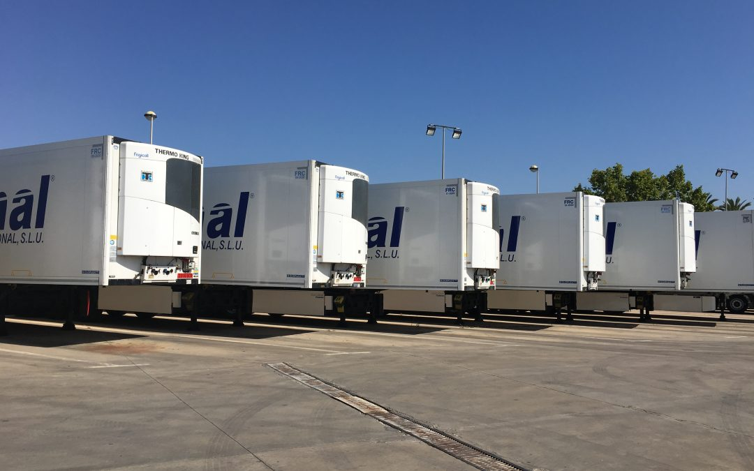 linea diagonal increases its fleet by 20 units to meet the needs of its customers.